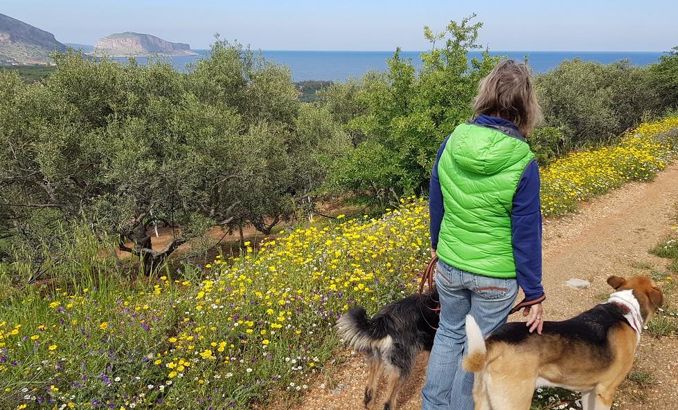 Spaziergang zu Panajotis mit Blick auf Monemvasia
