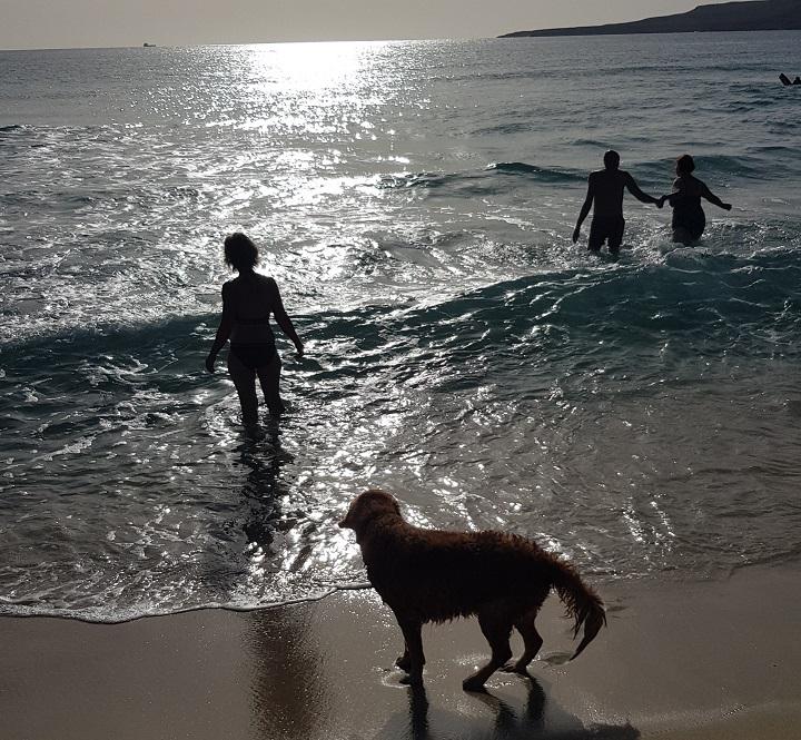 wundervolle Strände überall / wonderful beaches everywhere