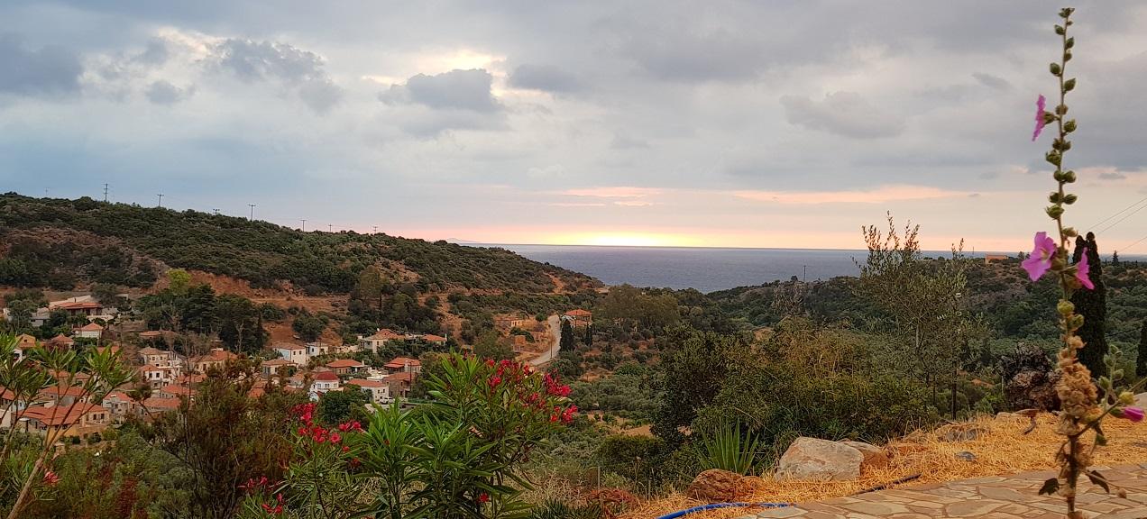 Nomia Laconia sunrise
