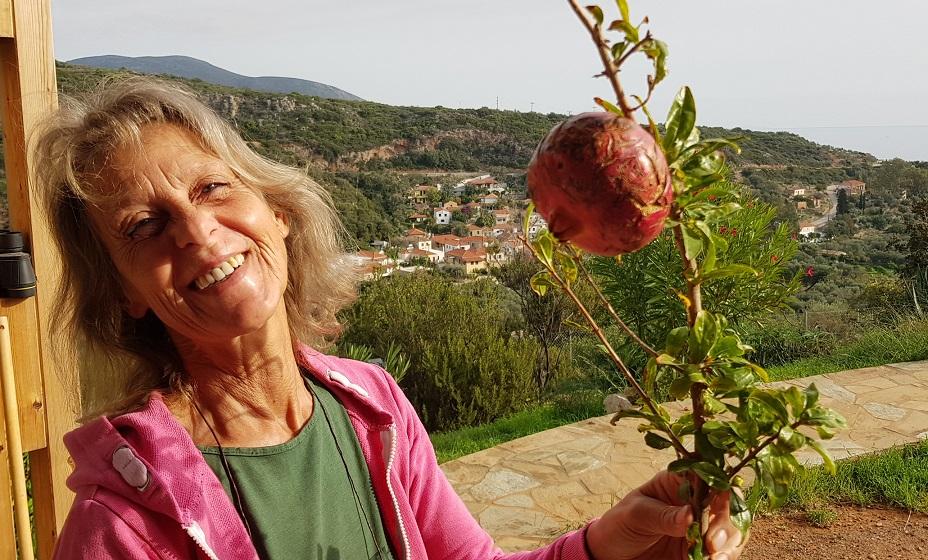 Rodi .... unser einziger Granatapfel 2018