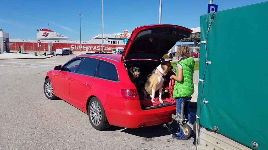 im Hafen Patra ie gewohnt unsere erste Pinkel-Pause mit den Hunden